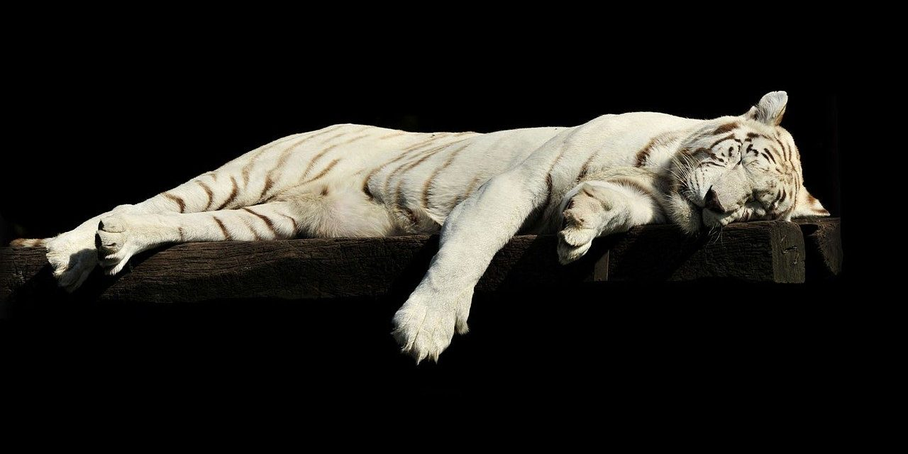 7 Tipps für richtig guten Schlaf