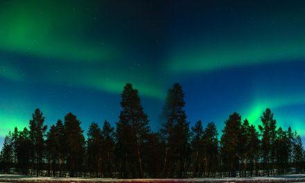 Sisu-  Herausforderungen annehmen auf finnische art.  Heartbeat Folge 20